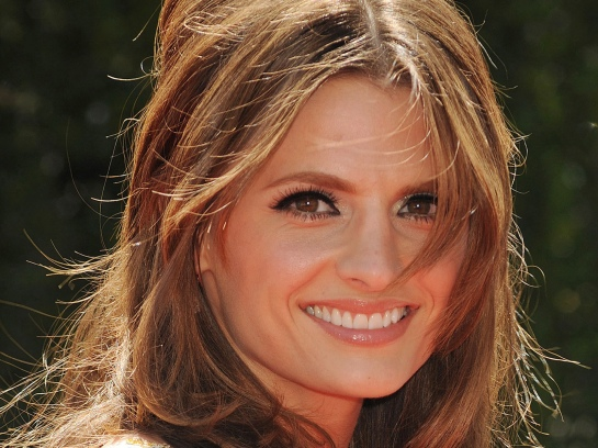 Stana Katic Wallpapers @ go4celebrity.com