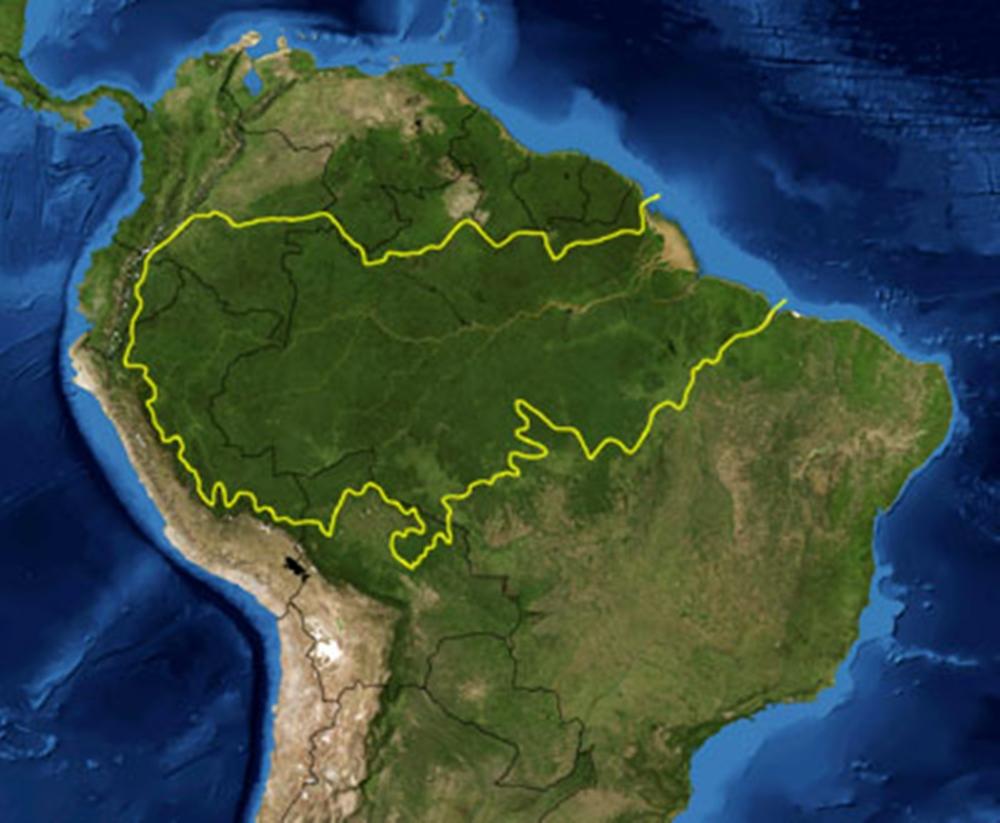 Amazona_rainforest